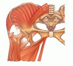 Как защемить нерв в тазобедренном суставе
