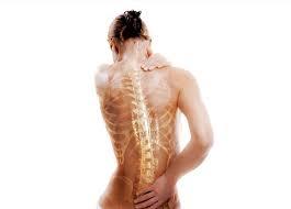 По какой причине может развиться остеопороз у женщины