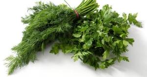 Какая зелень полезна при остеопорозе