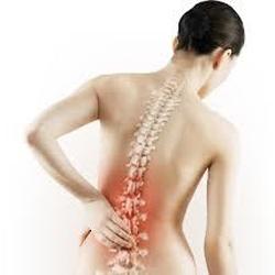 Причины развития остеороза