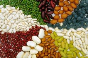 Употребление в пищу бобовых при остеоартрозе